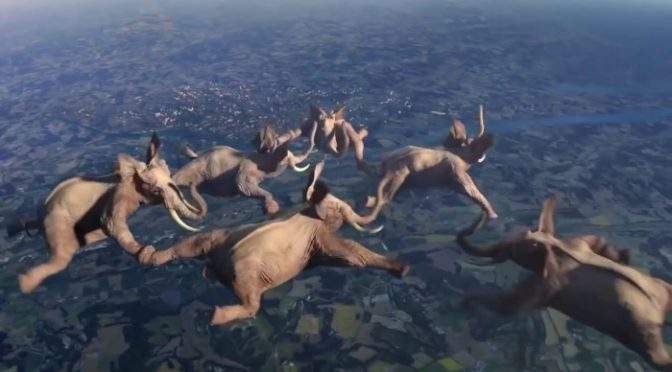 Elephants sky dive