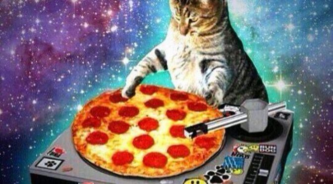 Kitty kat in space